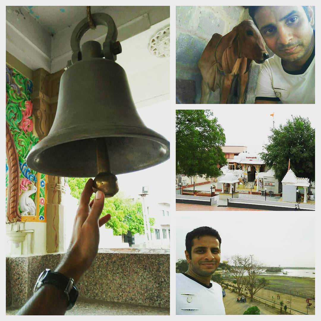Sounds of bells at lakeside village temple of Shiva, the ultimate Yogi! @ Halvad in Gujarat. Happy World Music Day & World Yoga Day 🎼🎶🎵 ps: check out my 20-day old new friend 🐄  #worldmusic #musicday #world #music #soundofmusic #worldmusicday #yoga #yogaeverywhere #yogalife #worldyogaday #village #villagepeople #villagelife #rural #countryside #temple #bells #bell #cows #shiva #adventure #travel #beautiful #animal #animallover #iloveanimals #om #aum #fun #joy