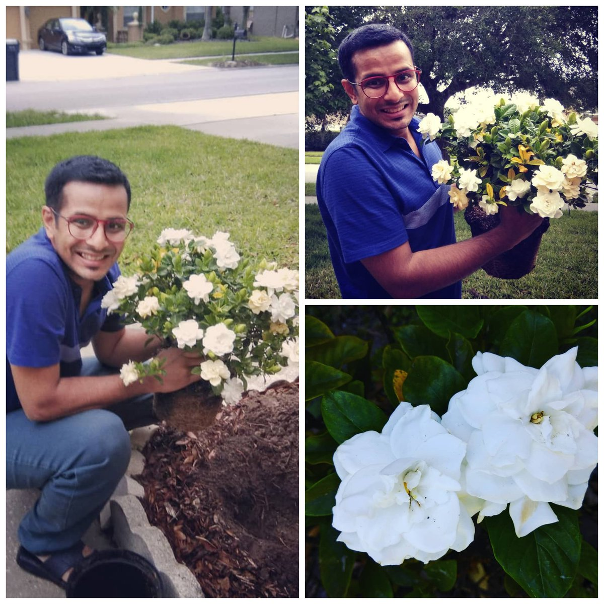 Happy #WorldEnvironmentDay Aah, if only I could digitally share the intoxicating sweet scent of these #Gardenias ! One of my favourite #flowers 😍! The rains are here, go plant your #garden!  #EnvironmentDay #FlowerPower  #beatplasticpollution #plasticpollution #gardening #fun https://t.co/AB53QipPCW